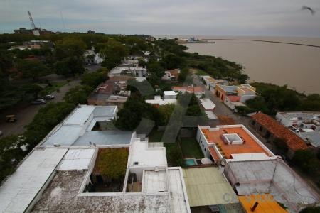 Tree building uruguay rio del la plata road.
