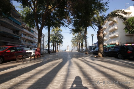 Tree car javea shadow spain.