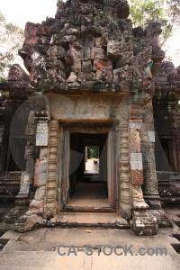 Tree carving lichen sky cambodia.