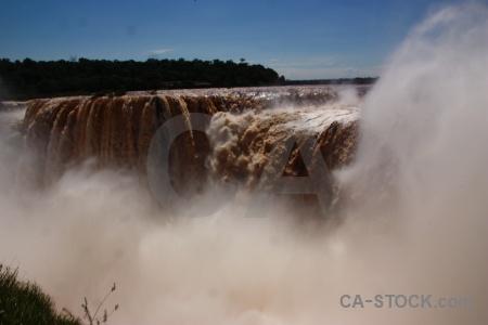 Tree garganta del diablo unesco waterfall iguacu falls.