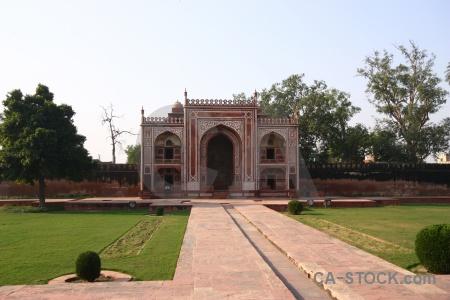 Tree india itimad ud daulah asia mausoleum.