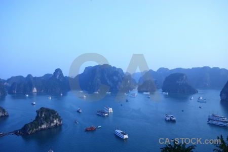 Tree island sea titov ha long bay.