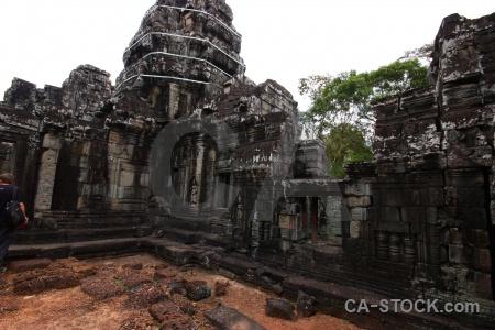 Tree khmer ruin siem reap buddhism.
