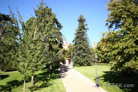 Tree path sky spain europe.