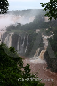 Tree river brazil south america waterfall.