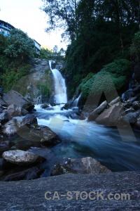 Tree river nepal asia rock.