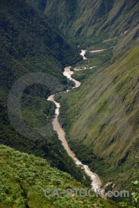 Tree river urubamba peru andes.
