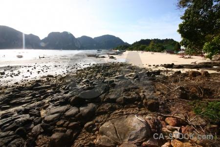 Tree sand ko phi don island water.