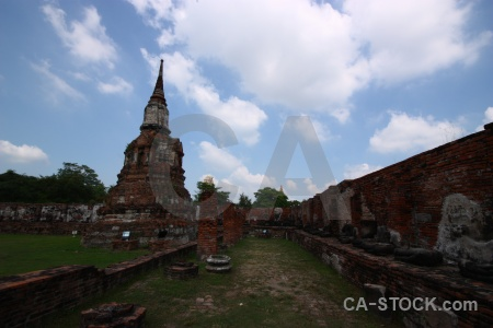 Tree sky brick wat mahathat ayutthaya.