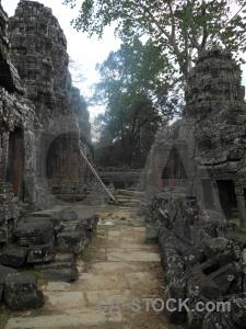 Tree southeast asia banteay kdei ruin khmer.
