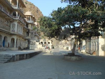 Tree temple asia archway hindu.