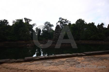 Tree unesco buddhist step southeast asia.