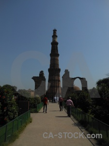 Tree unesco delhi qutab minar india.