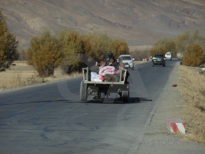 Tree vehicle himalayan tractor car.