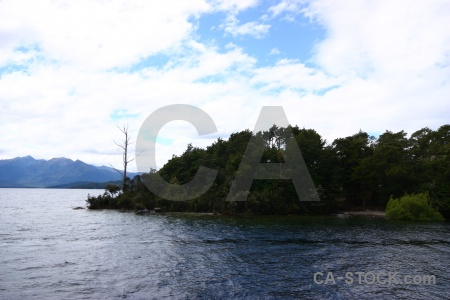 Tree water mountain sky south island.