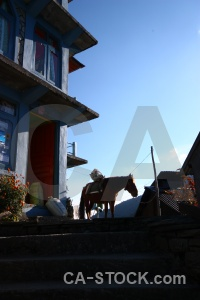 Trek asia horse building annapurna sanctuary.