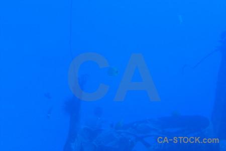Underwater wreck blue.