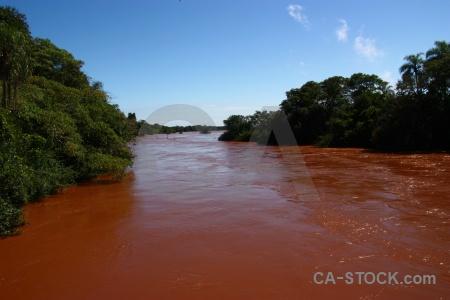 Unesco argentina iguassu falls tree iguacu.