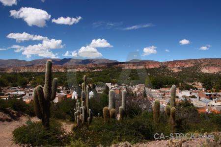 Unesco cactus salta tour sky humahuaca.