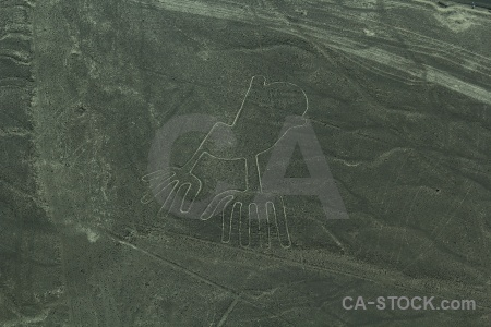 Unesco hands nazca lines flying south america.