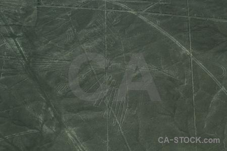 Unesco peru nazca lines aerial condor.