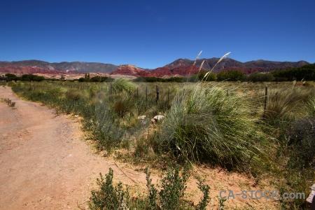 Unesco rock quebrada de humahuaca pampas grass landscape.
