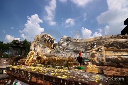 Unesco southeast asia tree wax brick.