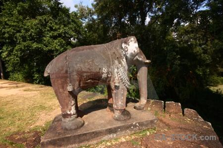 Unesco trunk siem reap stone ruin.