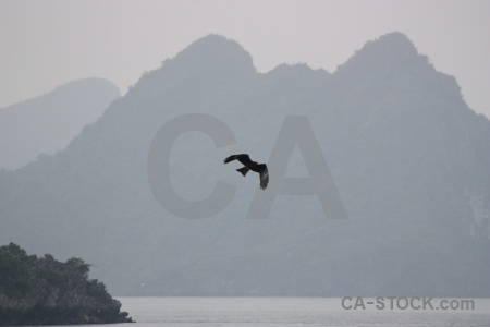 Unesco vinh ha long southeast asia cliff water.