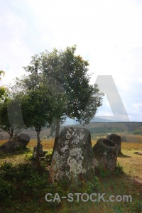 Urn lichen plain of jars cloud jar.