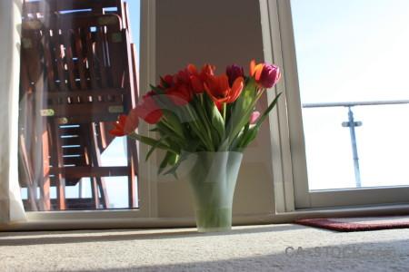 Vase bouquet plant flower tulip.