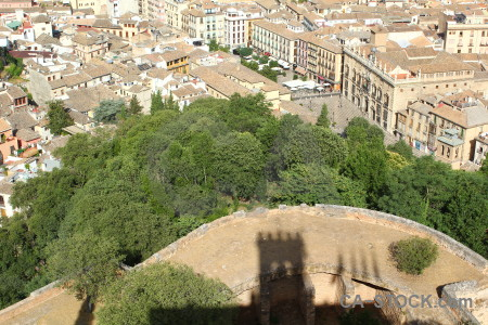 View forest above la alhambra de granada city.