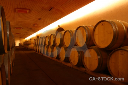 Vineyard chile inside santiago winery.