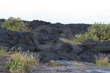 Volcanic green lava white.