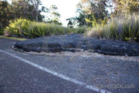 Volcanic lava green.