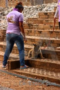 Wat pa luangta maha bua yannasampanno southeast asia pha luang ta thailand tiger temple.
