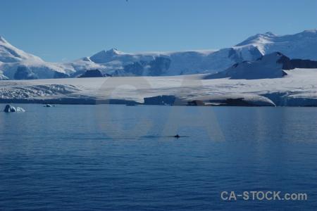 Water adelaide island sky orca snowcap.
