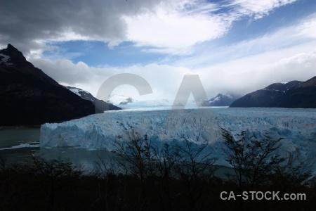 Water perito moreno lake argentino tree argentina.