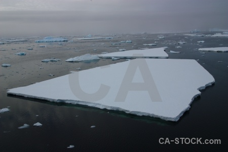 Water sea ice antarctica cruise crystal sound antarctic peninsula.