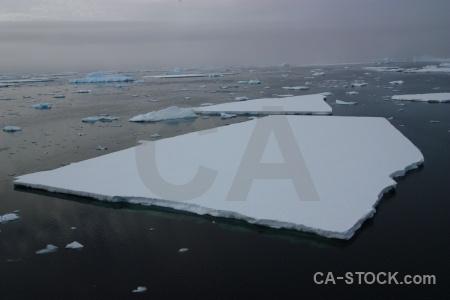 Water sea ice antarctica cruise crystal sound antarctic peninsula.