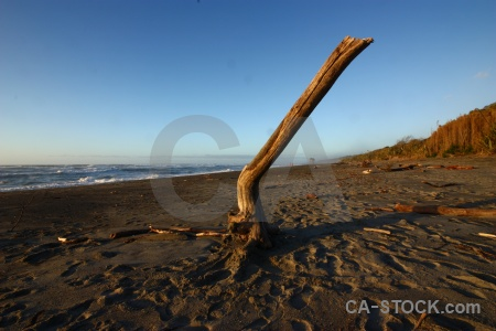 West coast sky drift wood punakaiki sea.