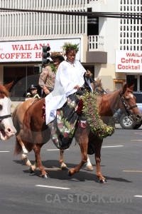 White animal horse person.