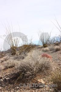 White desert landscape.