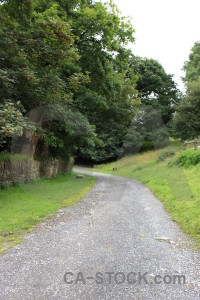 White green field path.