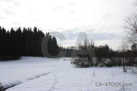 White winter snow landscape.