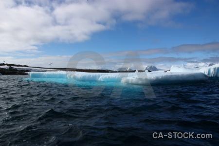 Wilhelm archipelago argentine islands day 8 antarctica cruise.