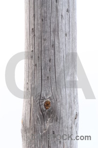 Wood post white texture.