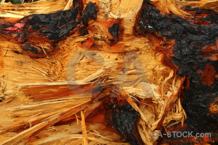 Wood rough javea spain europe.