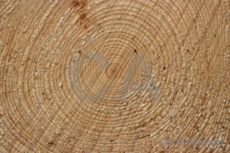 Wood texture brown.
